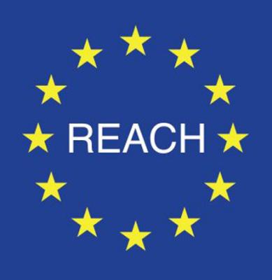 Baldassari Cavi: REGOLAMENTO REACH