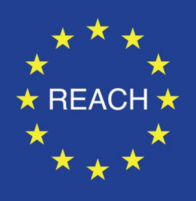 Baldassari Cavi: REACH REGULATION